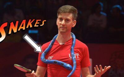Apprendre le snake au Ping-Pong