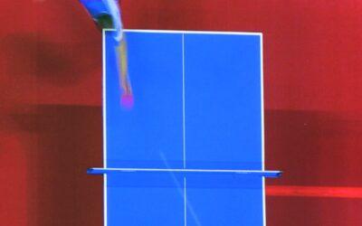 Livre Ping-pong par Jerome Charyn