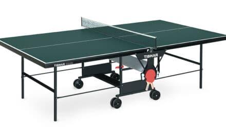 Table de Ping-Pong Tibhar 3000