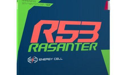 Revêtement ANDRO RASANTER R53
