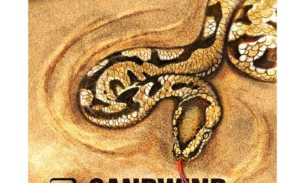 Revêtement Antitop Spinlord Sandwind